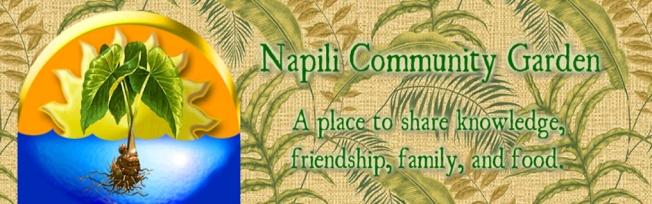 1 NCG logo